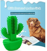 Load image into Gallery viewer, Cactus Dog Toothbrush - Gift Canadian