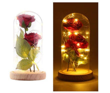 Load image into Gallery viewer, Romantic Enchanted Red Silk Rose in Dome with LED - Gift Canadian