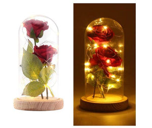 Romantic Enchanted Red Silk Rose in Dome with LED - Gift Canadian