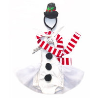 Frosty the Snowman's Scarf