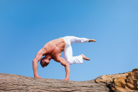 Jacked middle aged man doing advanced yoga shirtless on a tree