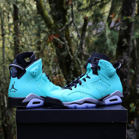 Custom Nike Air Jordan Retro 6 TIFF (you supply base shoe) 47d464cdf
