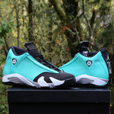 Custom Nike Air Jordan Retro 14 TIFF (you supply base shoe)