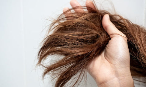 6 Home Remedies That Works Best On Your Dry Hair – Derma Essentia