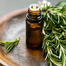 rosemary-extract-for-hair-growth