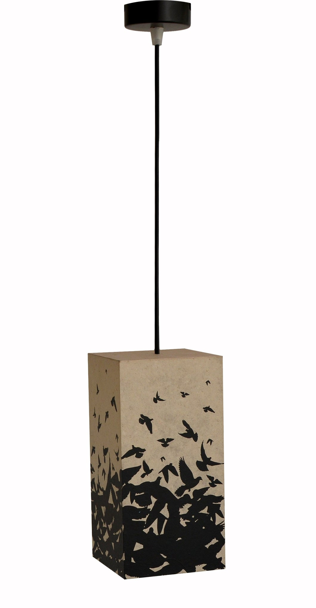Taking Flight Suspension LED Pendant Lamp