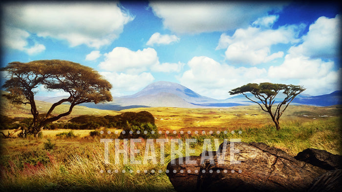African Grasslands, a theatrical scenic projection perfect for shows like Lion King, Madagascar and beyond