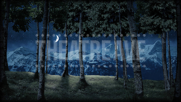 Birch Grove at Night, a digital projection backdrop perfect for theatrical and dance shows like Sound of Music, Shrek, and Giselle
