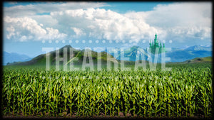 Cornfield Journey, a digital theater projection backdrop well suited for shows like Wizard of Oz and The Wiz