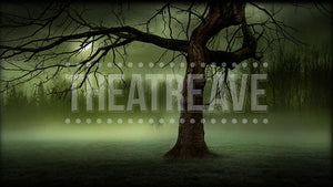 Eerie Vista, a digital projection backdrop perfect for theatre, ballet and dance shows like Sleepy Hollow, Sweeney Todd and Jack the Ripper