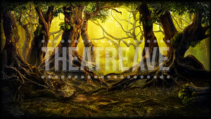 Enchanted Forest, a digital projection backdrop perfect for ballet and theatre shows like Wizard of Oz and Big Fish