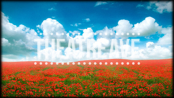 Poppy Field, a digital theatre projection backdrop perfect for shows like Wizard of Oz