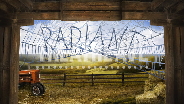 Radiant Barn, a digital theatre projection backdrop perfect for Charlotte's Web on stage