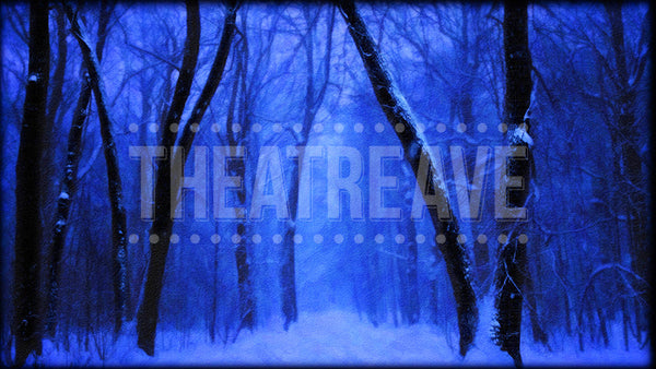 Winter Forest at Night a digital theatre projection backdrop perfect for shows like Elf the Musical, The Christmas Story, and The Nutcracker.