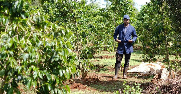 Our Coffee and Farmers - Maguta Estate Coffee
