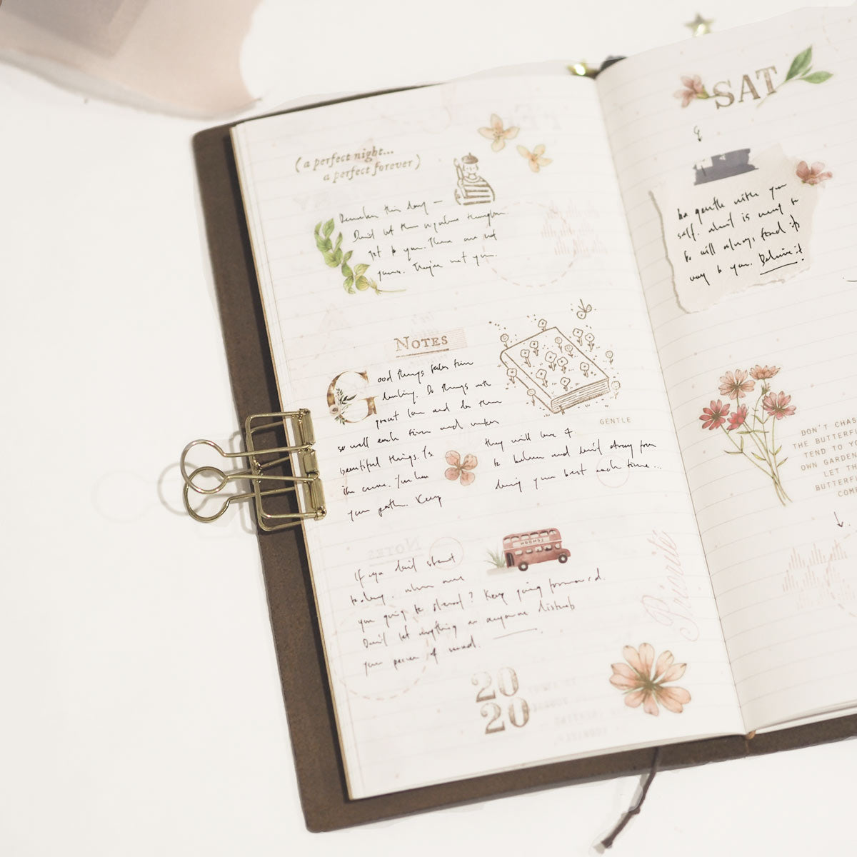 blinks of life journal