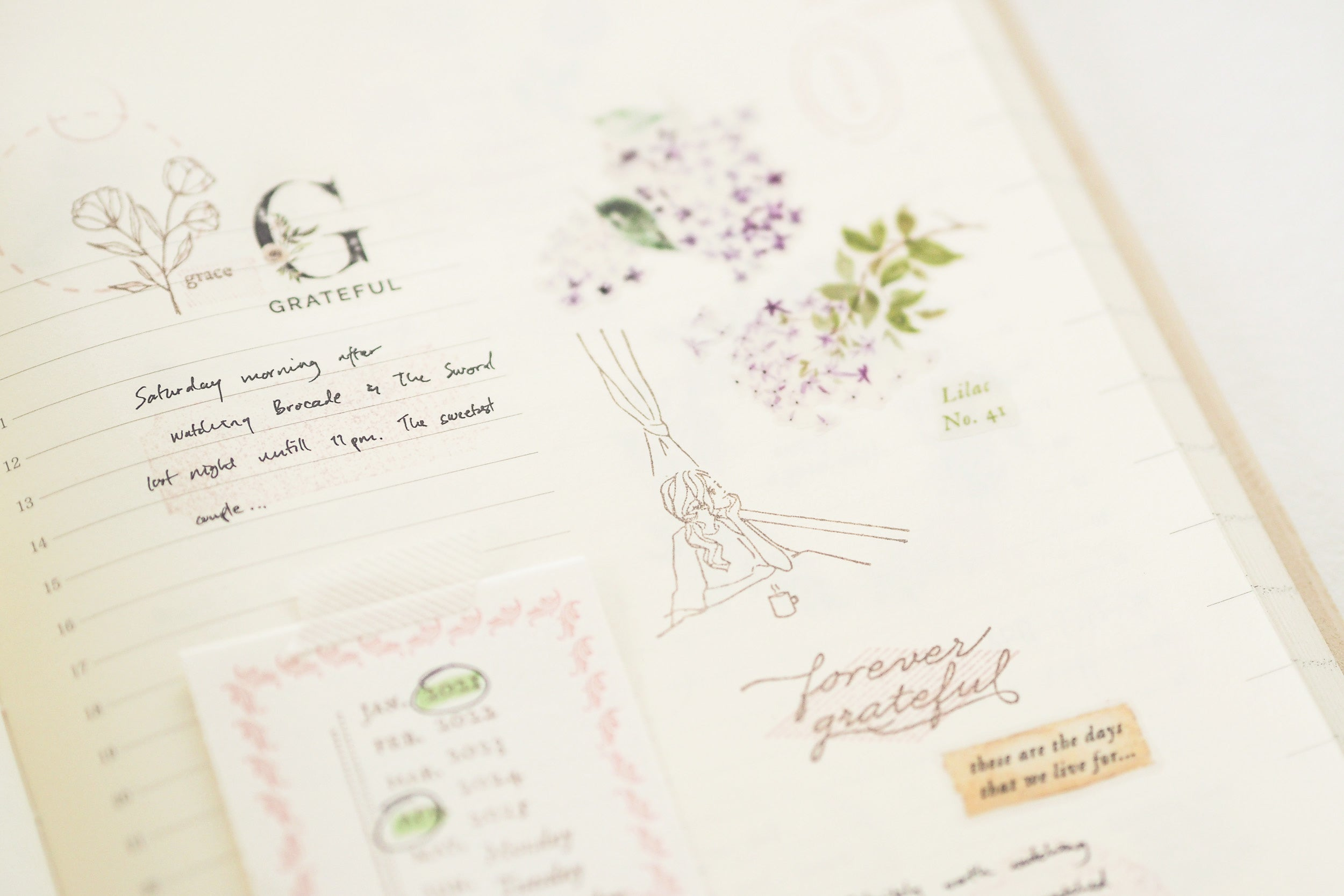 Blinks of Life - Journal Rubber Stamp Collection