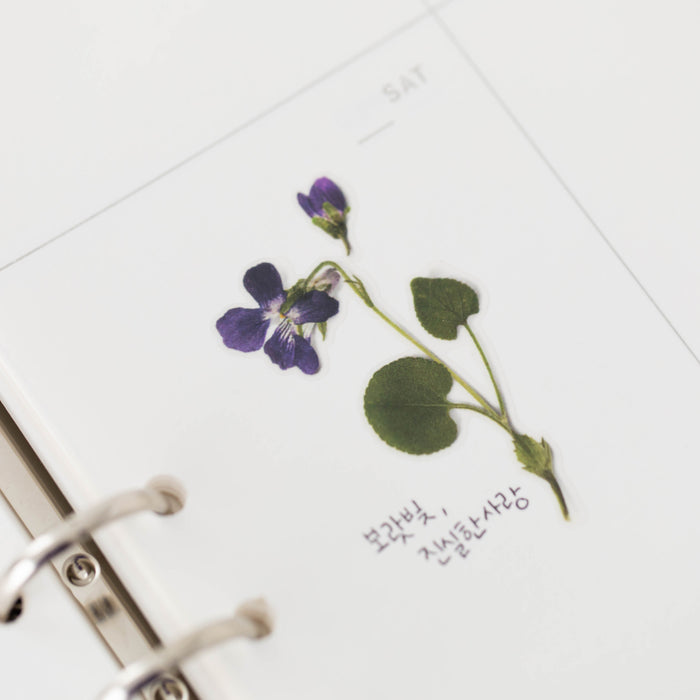 Appree Press Flower Sticker - #11 Manchurian Violet