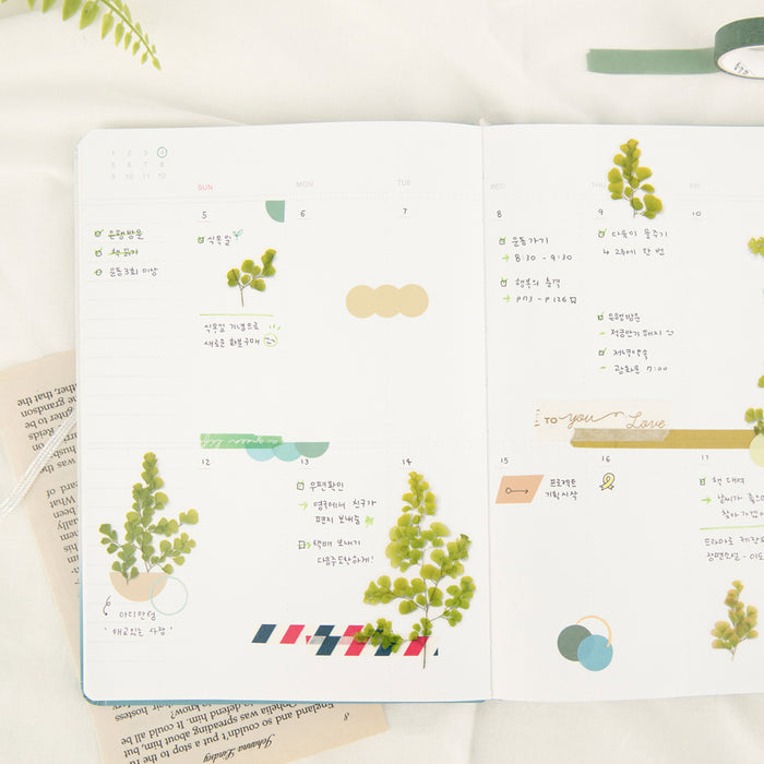 Appree Press Flower Sticker - #21 Adiantum