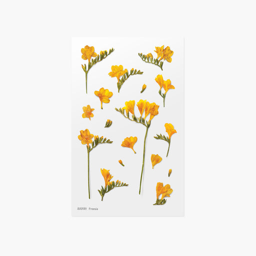 Appree Press Flower Sticker - #07 Freesia