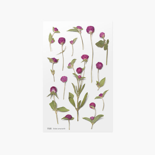 Appree Press Flower Sticker - #19 Globe Amaranth