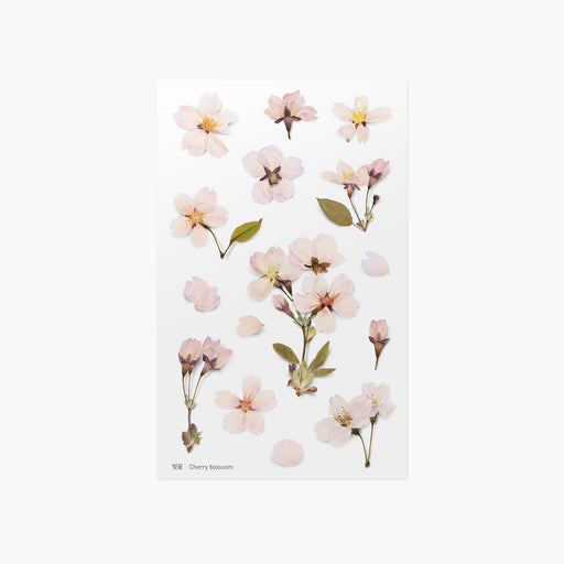 Appree Press Flower Sticker - #22 Cherry Blossom