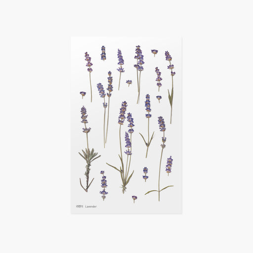 Appree Press Flower Sticker - #08 Lavender