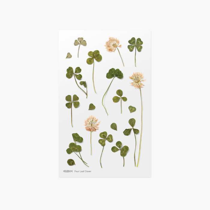 Appree Press Flower Sticker - #06 Four Leaf Clover
