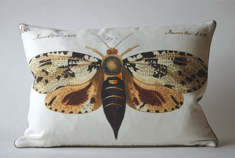 Moth Pillow P1016