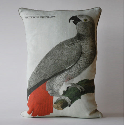 Polly Pillow P1033