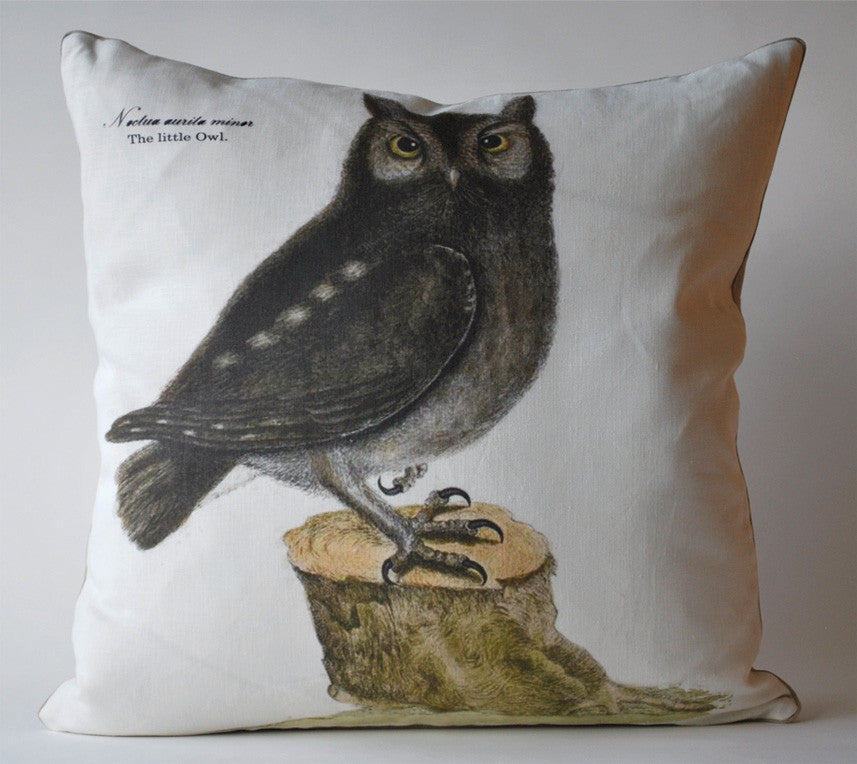 Vintage Owl Pillow P1038