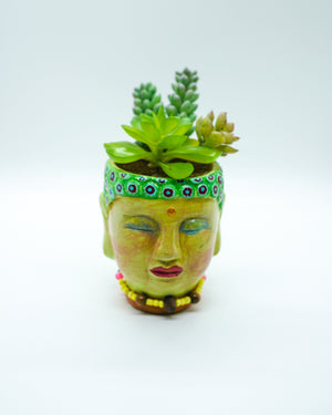 Green Buddha Head Succulent