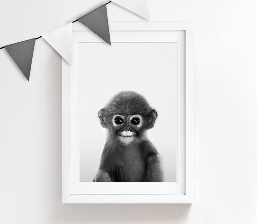 Black and White Baby Monkey Print