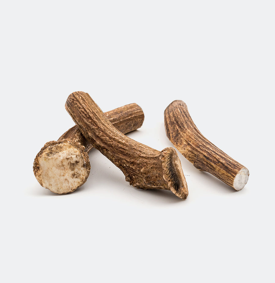 Axis Deer Antler Dog Chews