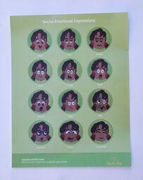Social Emotional Expressions Play Pad