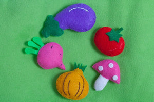 Vegetable Nutrition Felt Set