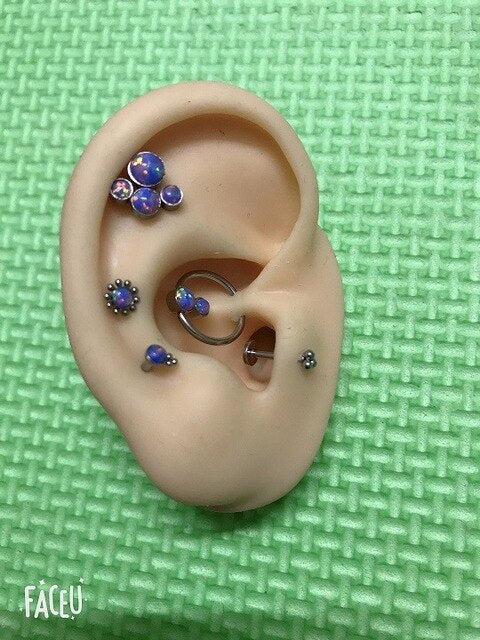 Women's 5 Piece Body Jewelry Nose Ear Lip Cartilage Piercing Ring Earring Set