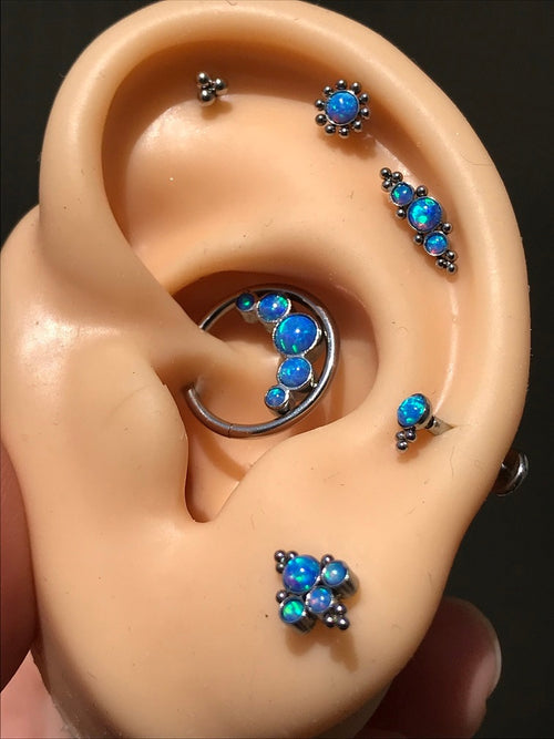 Women's 6 Piece Body Jewelry Nose Ear Lip Cartilage Piercing Ring Earring Set