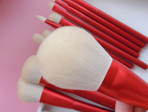Matte Makeup Brushes Set with Wood Handle