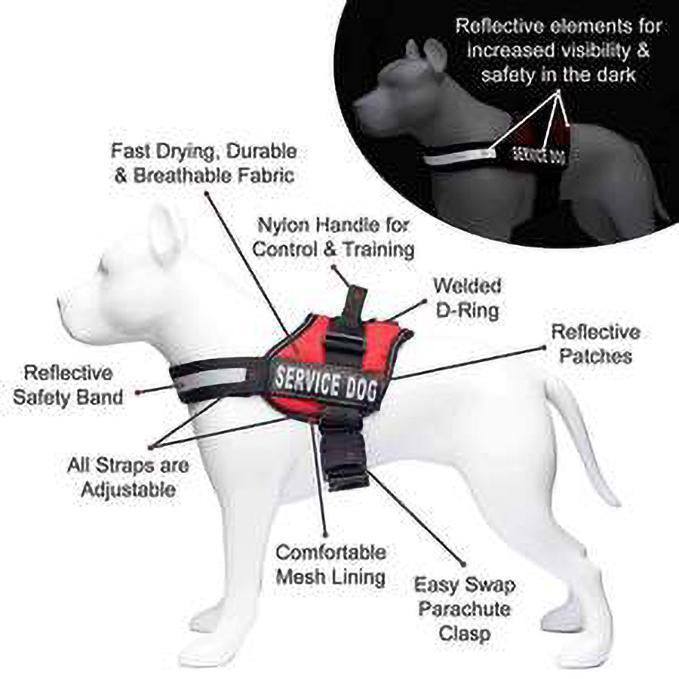 40%OFF--NEW ALL-IN-ONE NO PULL DOG HARNESS