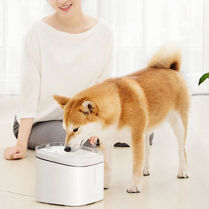 Creative Simple Pet Water Dispenser from Xiaomi Youpin
