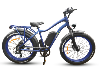 Full Size Electric Fat Tire Bikes