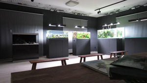 Aquascapersgalerie