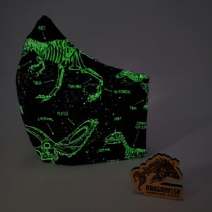 Glow-In-The-Dark Dinosaurs Reversible Bat Mask with Elastic