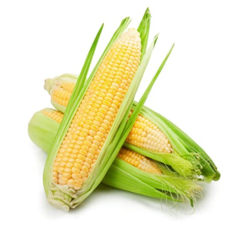 Corn - 4 Pieces