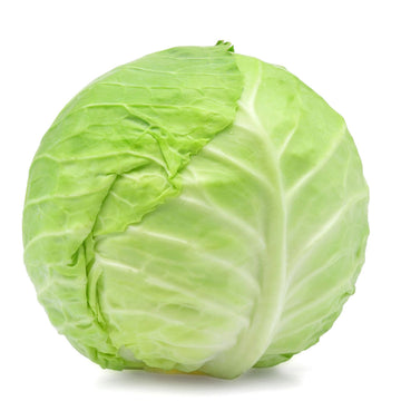 Cabbage, Green - 1 Head