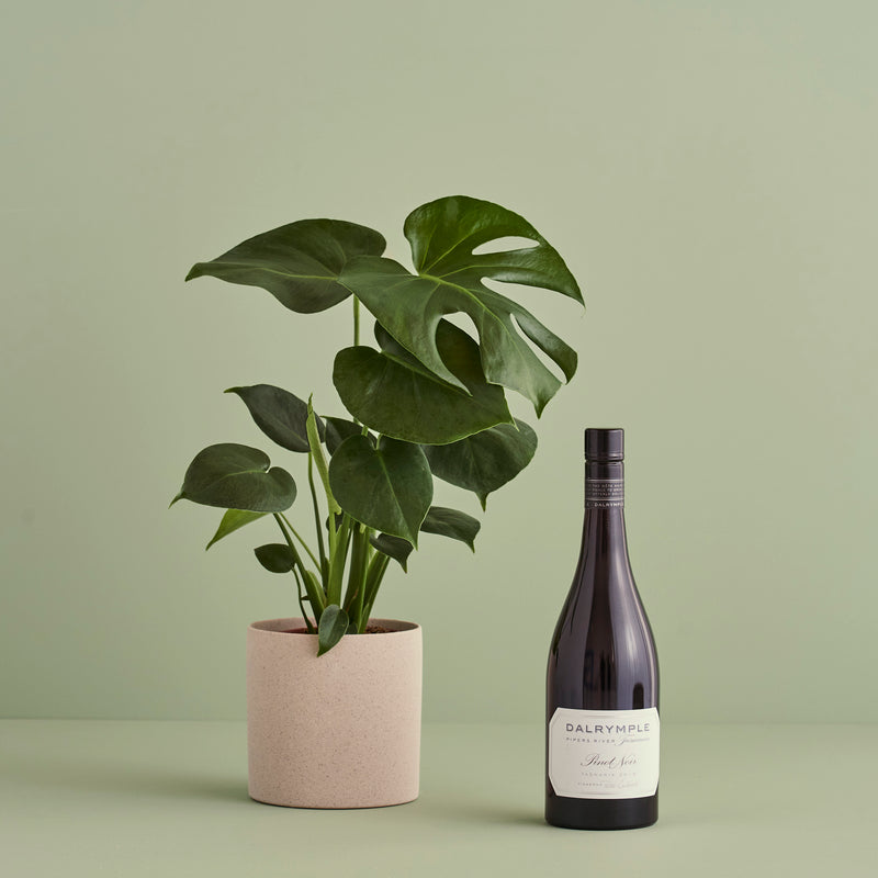 Plants and Pinot - FLOX