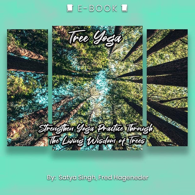 Tree Yoga: Strengthen Yoga Practice Through The Living Wisdom of Trees eBook - eBook - Chakra Galaxy