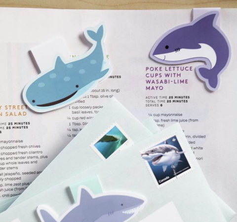 Craftedvan Whale Shark, and Shark Bookmarks