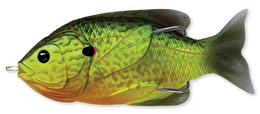 552 Florescent Pumpkinseed